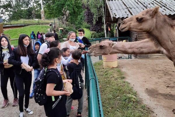 Besuch Tierpark Essehof